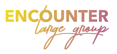 Encounter Large Groups