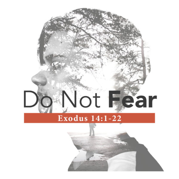Do Not Fear – 04/07/2019