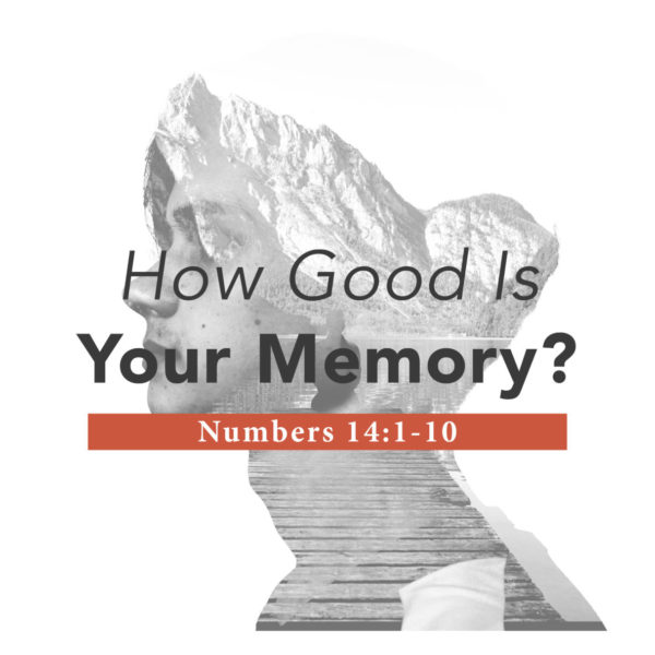 How Good Is Your Memory – 04/28/2019