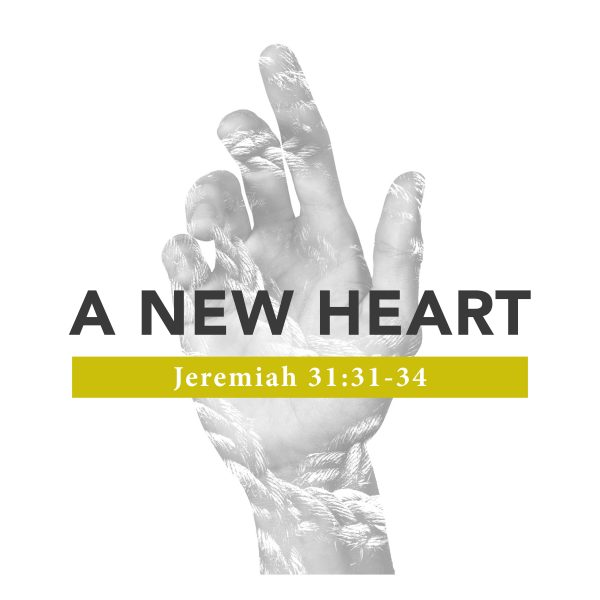 A New Heart - 08/11/2019