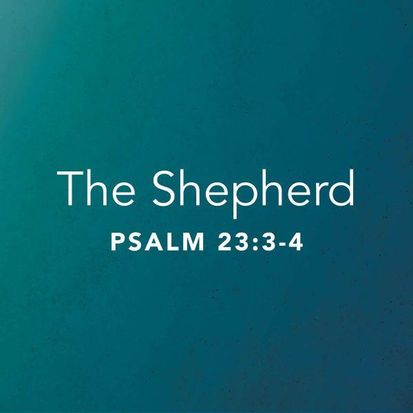 The Shepherd Part 2