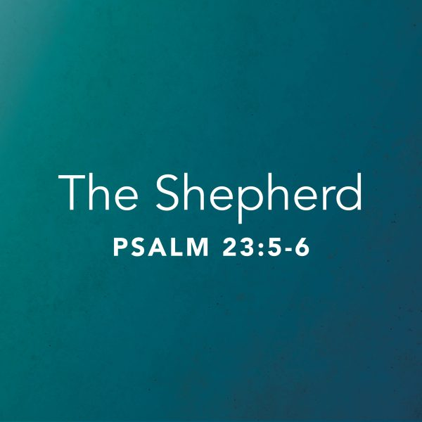 The Shepherd – Part 3