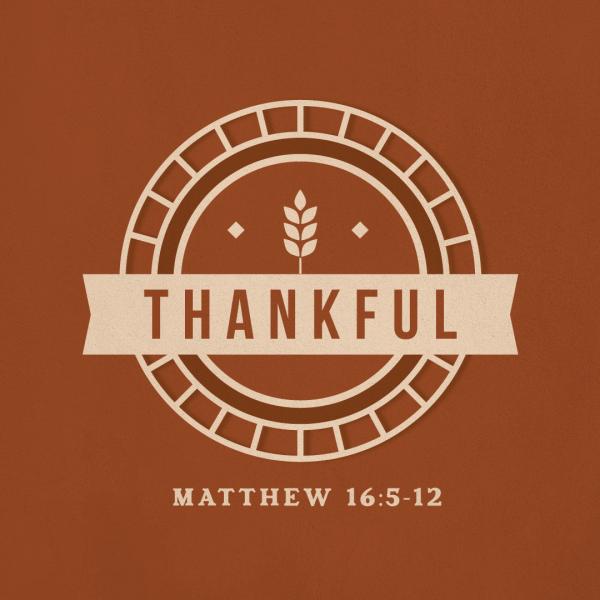 Thankful, part 3