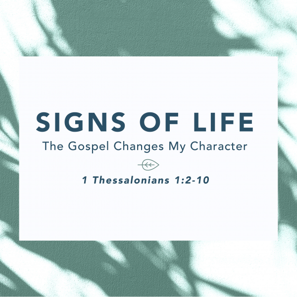 Signs of Life [4.11]